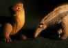 Half and Half (Brett A. Fernau) Tags: toys otter anteater cdrxt deadeyebart brettfernau utatotter utatainhalf utatanteater