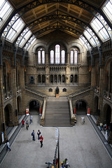 The Central Hall (l&coolj) Tags: holiday london architecture staircase taos naturalhistorymuseum 30d centralhall sigma1770