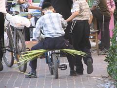 Sukkot in Israel 2019