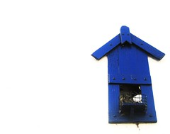 lonley blue birdhouse (Darwin Bell) Tags: blue lonely whiteground outstandingshots