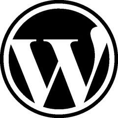 WordPress (Photo credit: Adriano Gasparri)