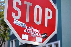 2006-10-29 STOP EATING ANIMALS ([ henning ]) Tags: street red streetart art animals sign altered d50 germany typography nikon sticker stickerart eating label north cologne köln 2006 stop nrw lettering koeln nordrheinwestfalen rheinland henning rhinewestphalia mühlinghaus muehlinghaus