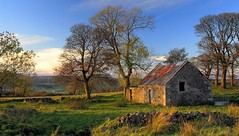 An Autumn Evening (Scott Foy) Tags: trees building abandoned stone wall canon scotland bravo farm ruin fields a620 renfrewshire howwood specland scottfoy