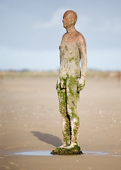 f5 (oneplusi) Tags: gormley crosby anotherplace