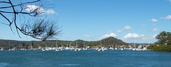 Booker Bay from Daley Avenue Daleys Point (Spikebot) Tags: australia nsw walkies brisbanewater pc2257 sthubertsisland auspctagged bookerbay fishermansbay hardysbay daleyspoint daleyavenue