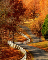 Winding Road (birdyboo) Tags: lake fall landscape ky country barkley outstandingshots specland specnature aswpix outstandingshotshighlight