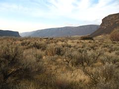 flickr4 (Tanner Grant) Tags: washington hiking dryfalls dryfallslake monumentcoulee umatillarock