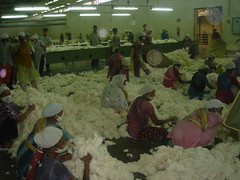 garments factory (phuchka for the masses!) Tags: factory bangladesh garments flickrexport2demo