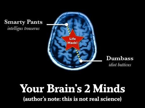 Your Brain's 2 Minds