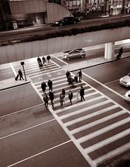 LAX Crosswalk ('SeraphimC) Tags: people delete2 save3 delete3 save7 save8 delete save save2 save9 save4 save5 save10 save6 savedbythedeltemeuncensoredgroup save11
