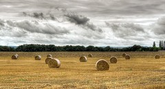 HDR: Acre in Mecklenburg