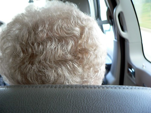 the back of grandma's head
