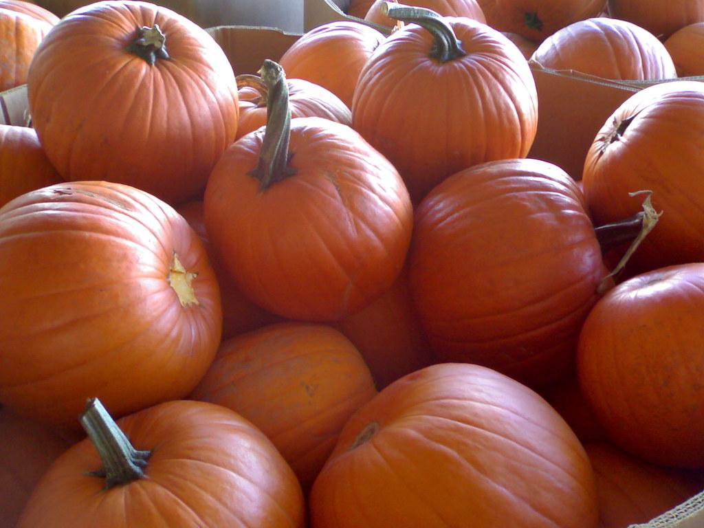 Halloween's Pumpkin @ Canadian Superstore, Vancouver