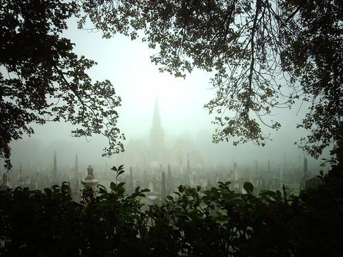 Spooky fog cloaked graveyard by hugovk