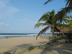 mini-06.10.2006 15-54-58 (danouch) Tags: de photo barbara plage bruno mozambique cocotier schade bienne journes fotofesta meinrad
