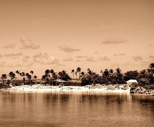 Paradise Found - Sepia