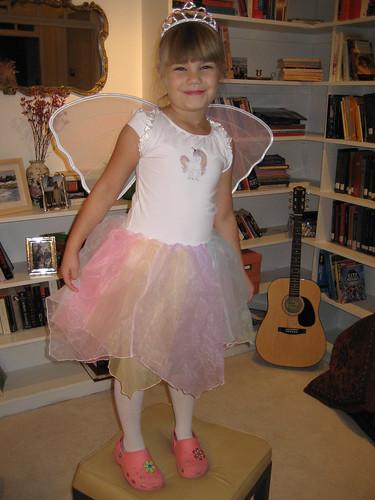 Ballerina/Fairy? or Fairy/Ballerina?