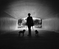 Silhouette Under the Tunnel (alapan.com) Tags: sanfrancisco goldengatepark film dogs rangefinder tunnel richmond betty analogue contrejour olympusxa sfist innerrichmond richmonddistrict filmphotography filmisnotdead agoncillo 96hrs sfchronicle96hrs longlivefilm wwwalapancom johnagoncillo bupxbitportrait believeinfilm