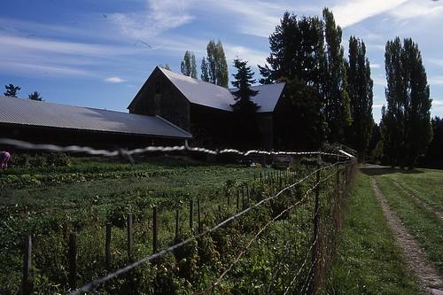 Piercey's Farm