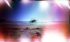 Leakers and Streakers ([ CK ]) Tags: horse sun beach mediumformat mexico caballo surf pinhole lightleak motionblur 6x9 streaking provia zero leaking zeroimage happyaccidents streakers leakers