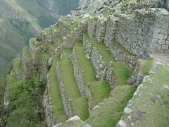 Machu Picchu - even more terraces