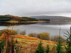 loch carron(stirlingshire,scotland) (Nicolas Valentin) Tags: lake water scotland scenery loch beautifull instantfave instantfav abigfave p1f1 27fav aplusphoto cc450