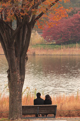 Couple (mrhayata) Tags: park city autumn tree leaves japan geotagged tokyo blog pond memorial couple 日本 東京 tachikawa showa 東京都 カップル mrhayata geo:lat=357055964 geo:lon=1393945336
