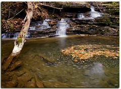 Nature's Spin On It (nailbender) Tags: longexposure fall nature waterfall rocks alabama blountcounty nailbender impressedbeauty spinningleaves jdmckinnon
