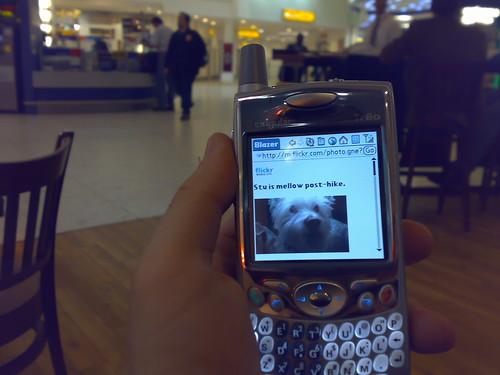 yah Flickr Mobile!