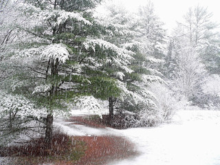 2006 12-04 first snow