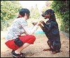 Me and my best friend 12-07-06 (me&mydobe) Tags: dog hands 5bestdogs doberman paws bestfriends dobe dobermann