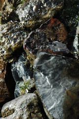 Rocks, Water and Ice, Woodfield Inn
