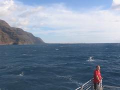 IMG_2520.JPG (Dan F.) Tags: hawaii napalicoast bluedolphin kaua'i