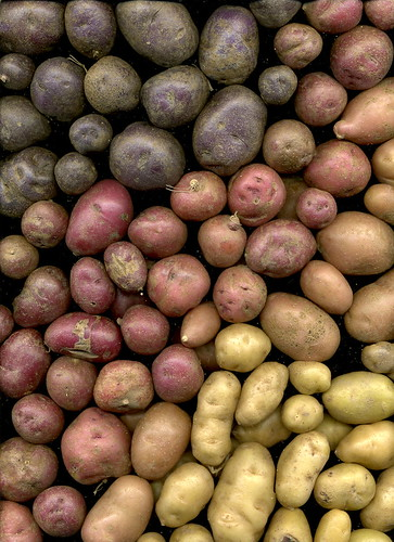 Photo- Potatos can be healthy too (ranjit@flickr)