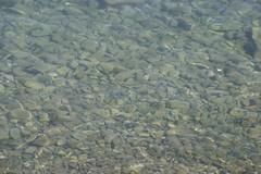 Clear Water (invisible A) Tags: slovenia piran slo