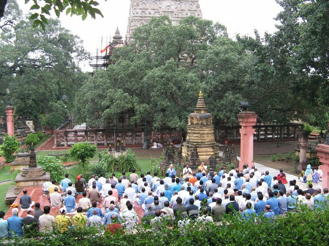 Mahabodhi Temple   mass meditation 2