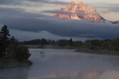 Moose Crossing (ASUn_devil) Tags: sunrise moose 2006 wy grandtetonnationalpark specnature