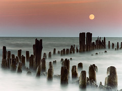 Moonrise at Evanston, Illinois - water lake twilight moonrise moon cotcmostfavorites jordan jamesjordan james relic austerity kkfav