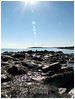 untitled (erin_nadeau) Tags: beach coast explore landsend shore vacationland thewaylifeshouldbe coastalmaine ©2008eringonzalez