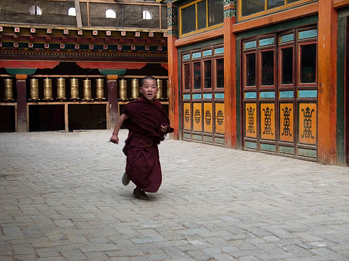 Photo of Young Monk