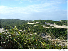 Just breathe... (Maria Dalva) Tags: verde green brasil ar dunes air dune duna breeze dunas vegetao riograndedonorte brisa worldwalkers 7ou9lagoas