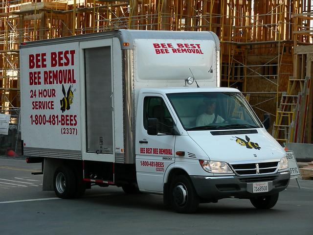 truck sandiego bee dodge van sprinter pestcontrol boxvan beebest