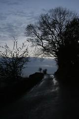 Twilight road