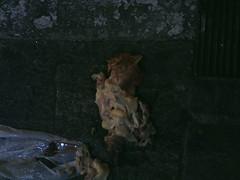 still life (Fran Mosquera) Tags: stilllife chicken galinha naturezamorta