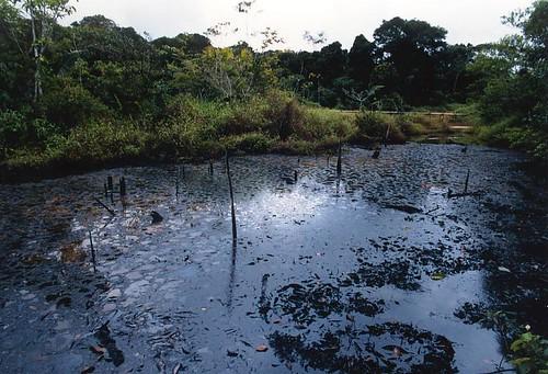 2. La contaminación del territorio Achuar por FECONACO.
