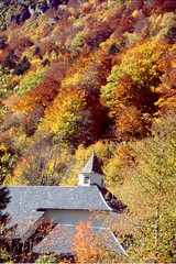 Caldes de Boí (Jordi's) Tags: autumn trees naturaleza mountain church nature yellow forest landscape paisaje catalonia árbol catalunya montaña arbre pyrenees muntanya pirineos pirineus tardor paisatge fageda pirineu pallarssobirà balneari valldeboí ribagorça caldesdeboí wwwjordiroycom