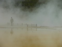 Walters in the Mist (Charis 75) Tags: newzealand wow rotorua steam walt waiotapu thermalwonderland rotovegasadventure