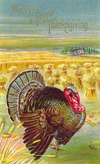 Thanksgiving Card 1