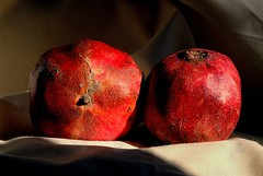 Pomegranate (cienne45) Tags: friends italy ex nature fruits bravo liguria group pomegranate cienne45 carlonatale explore genoa fv10 natale interestingness13 photographia i500 1on1nature gtaggroup goddaym1 utatafeature xploremypix bonzag 30faves30comments300views bravoexgroupbravo exploreexset explore1336