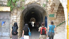 "into the tunnel • <a style=""font-size:0.8em;"" href=""http://www.flickr.com/photos/70272381@N00/304630462/"" target=""_blank"">View on Flickr</a>"